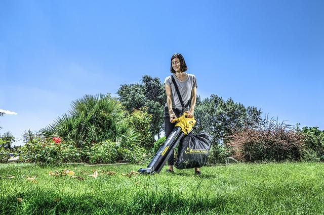 Sopladora aspiradora de hojas Garland