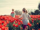 actividades con niños en el jardin